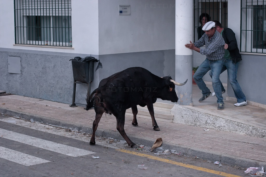Bailando con toros