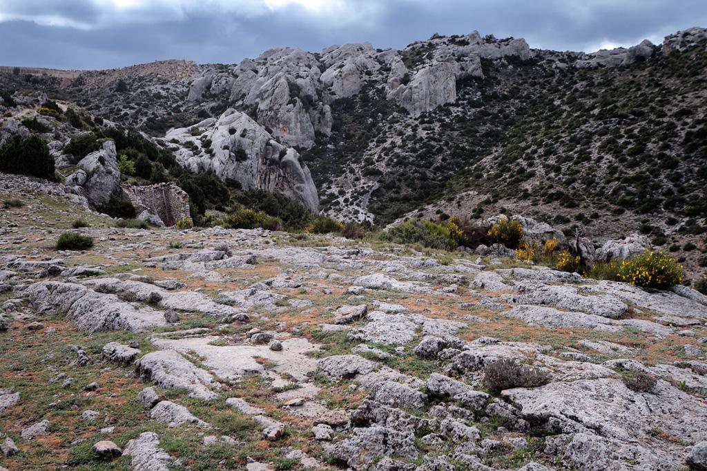 Entorno de Charán