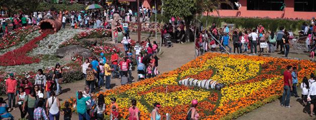 Feria de las Flores y del Café de Boquete