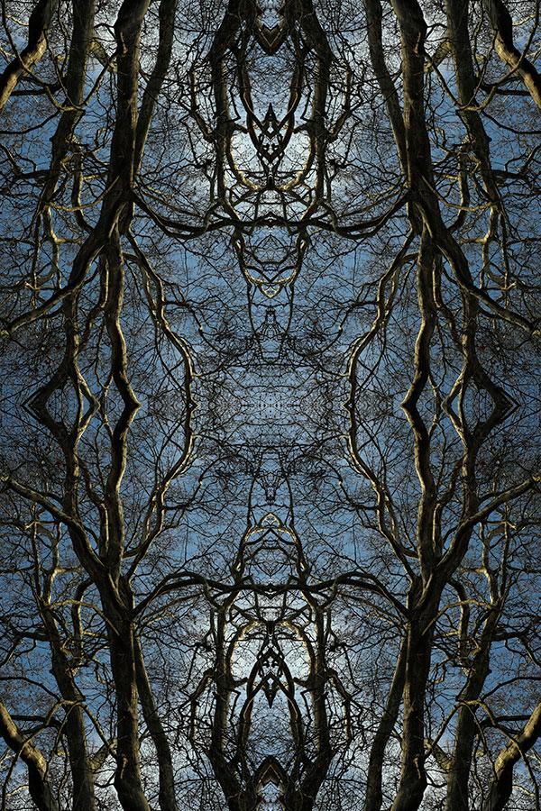 Expo Naturaleza Inventado - Invented Nature [F10]
